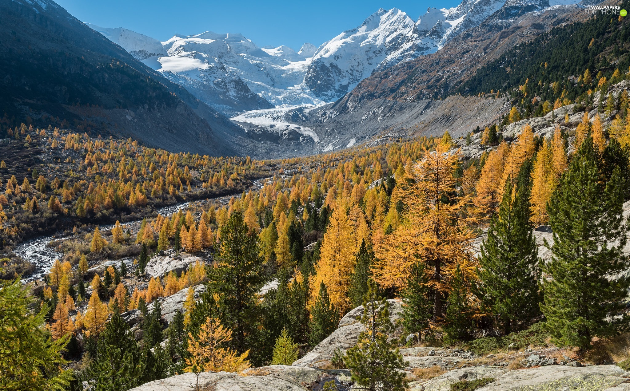 Mountains, autumn, rocks, Yellow, Canton Graubunden, Switzerland, viewes, Morteratschgletscher Glacier, trees