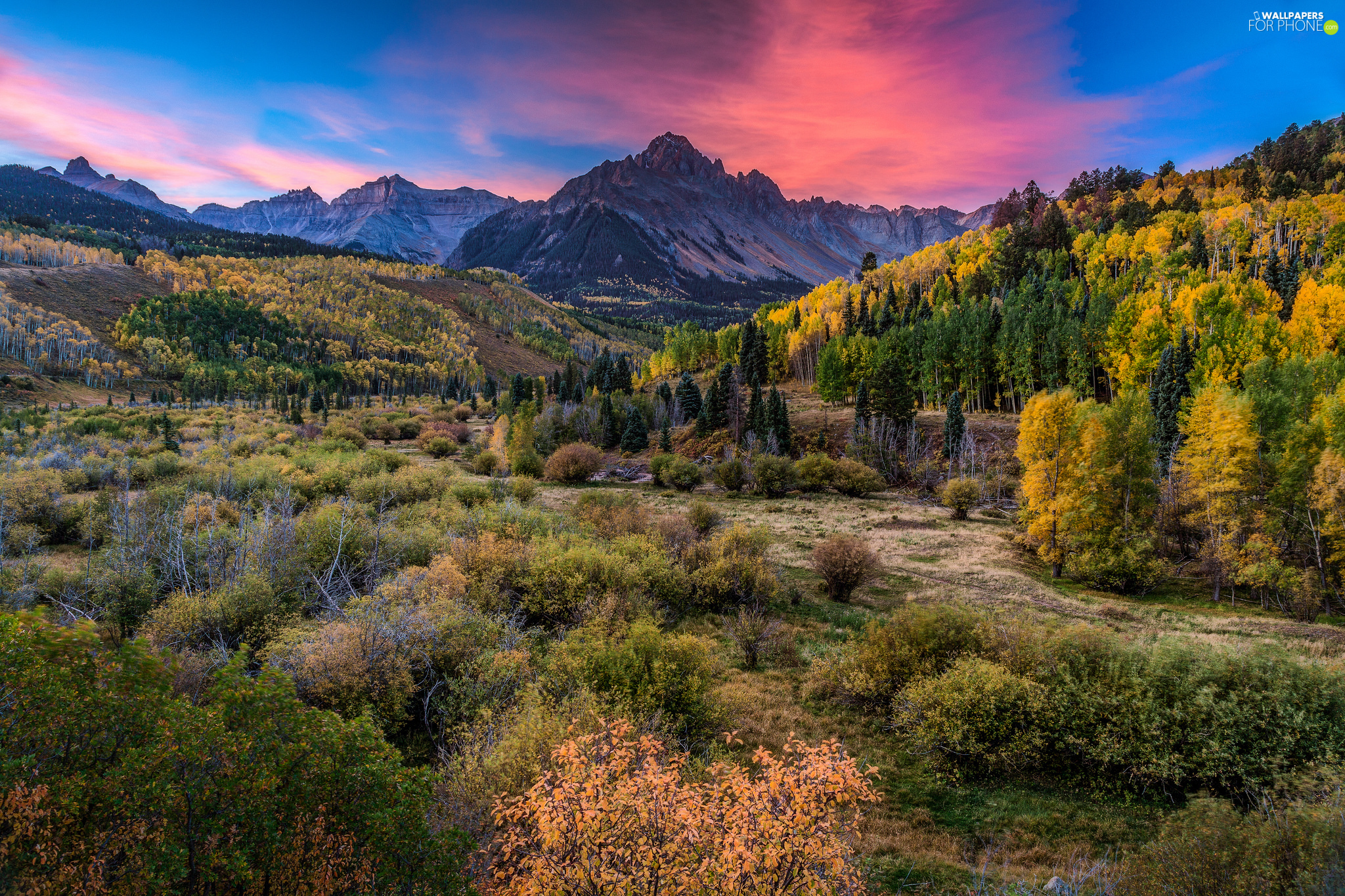 San Juan Mountains, Colorado, VEGETATION, San Juan County, The United States, forest, Great Sunsets