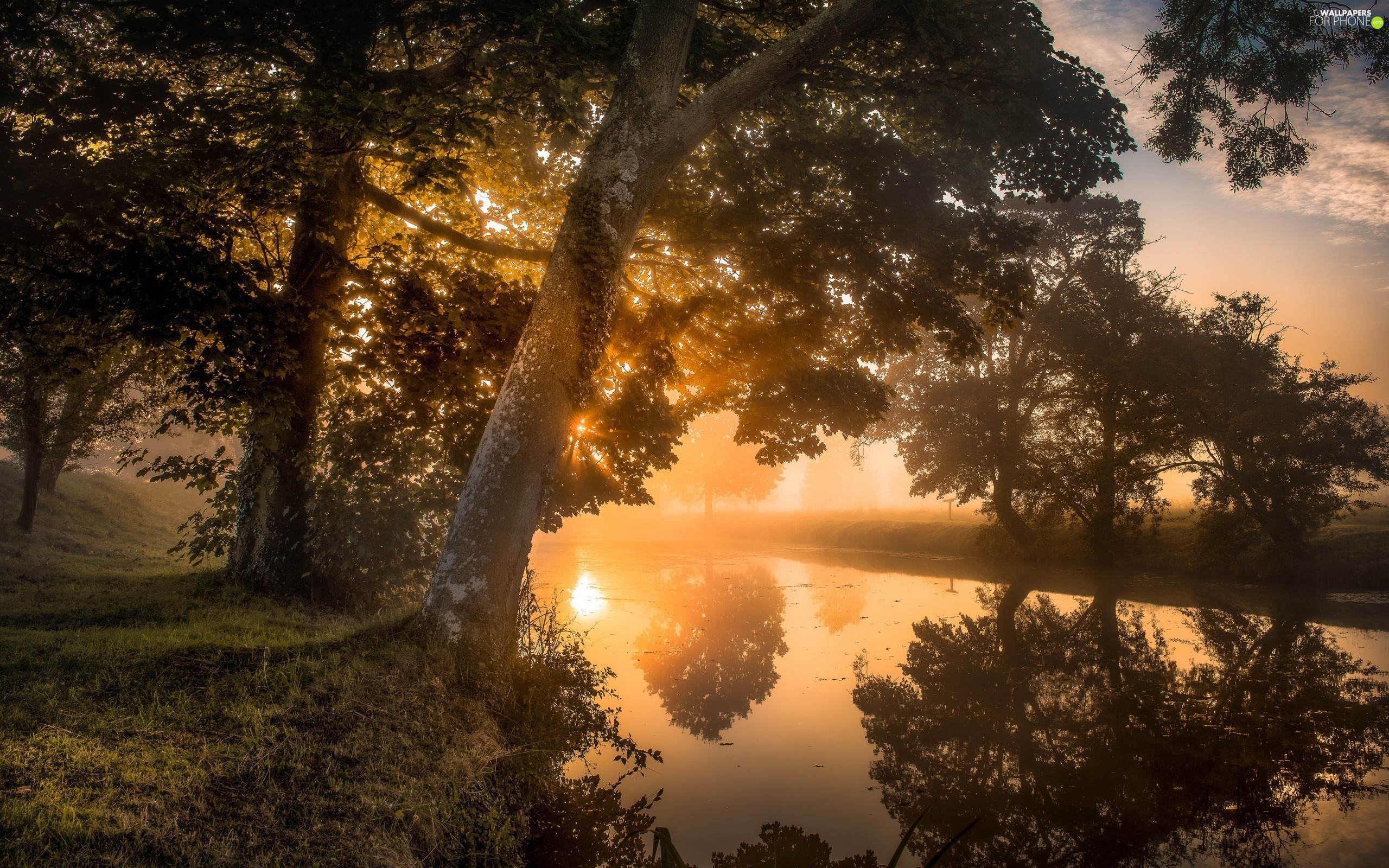 Northamptonshire County, England, Lyveden New Bield, River, morning, Sunrise, trees, viewes, Fog
