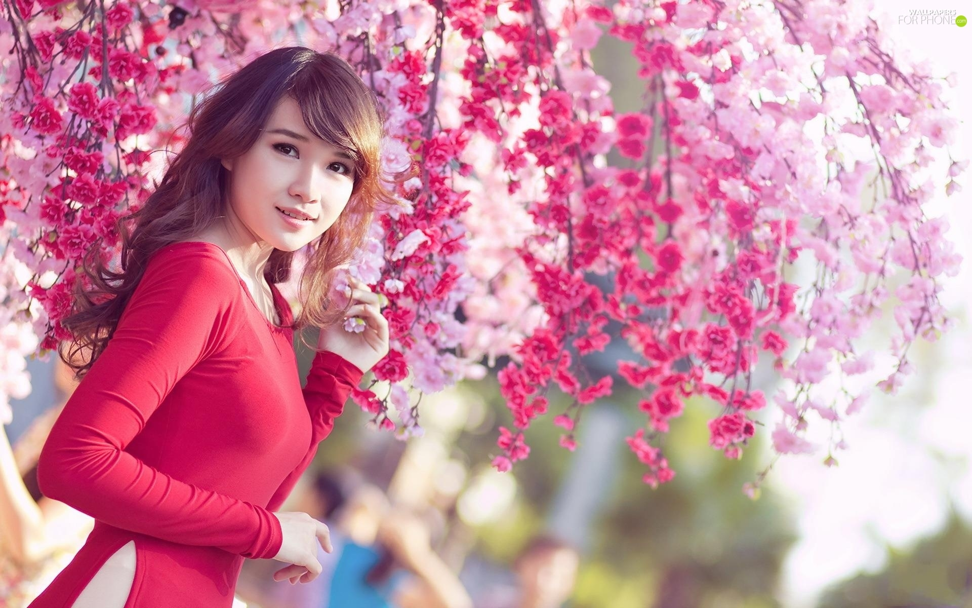 trees, Garden, Japanese girl, flourishing, Smiling