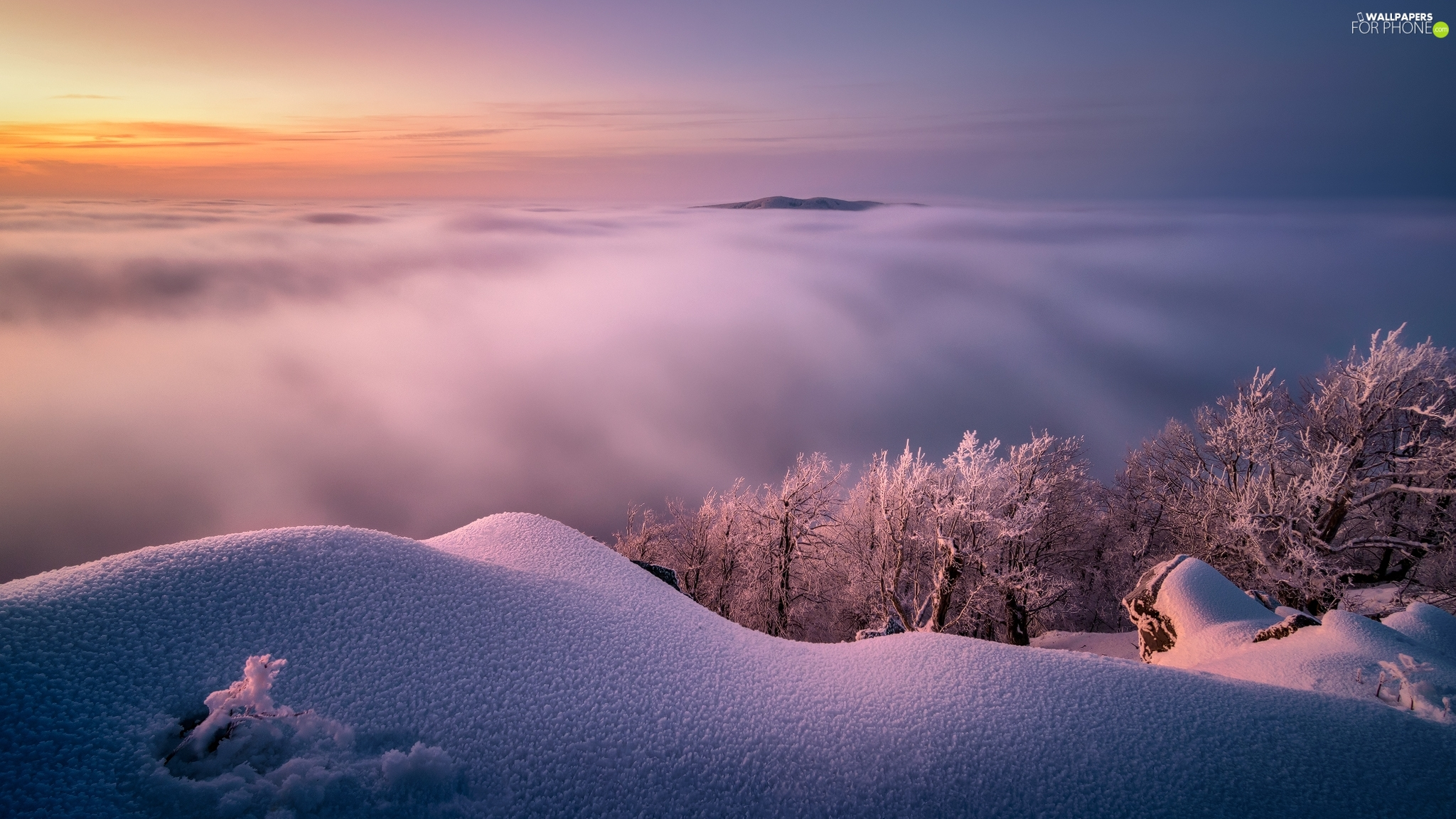 Mountains, Fog, Sunrise, clouds, viewes, snow, winter, trees