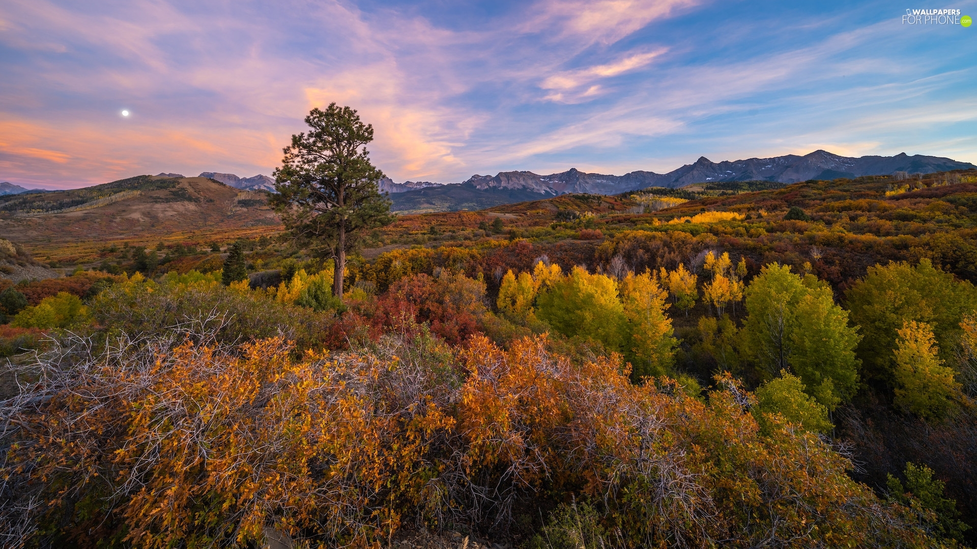 State of Colorado, The United States, Telluride, autumn, trees, moon, VEGETATION, Coloured, The Hills