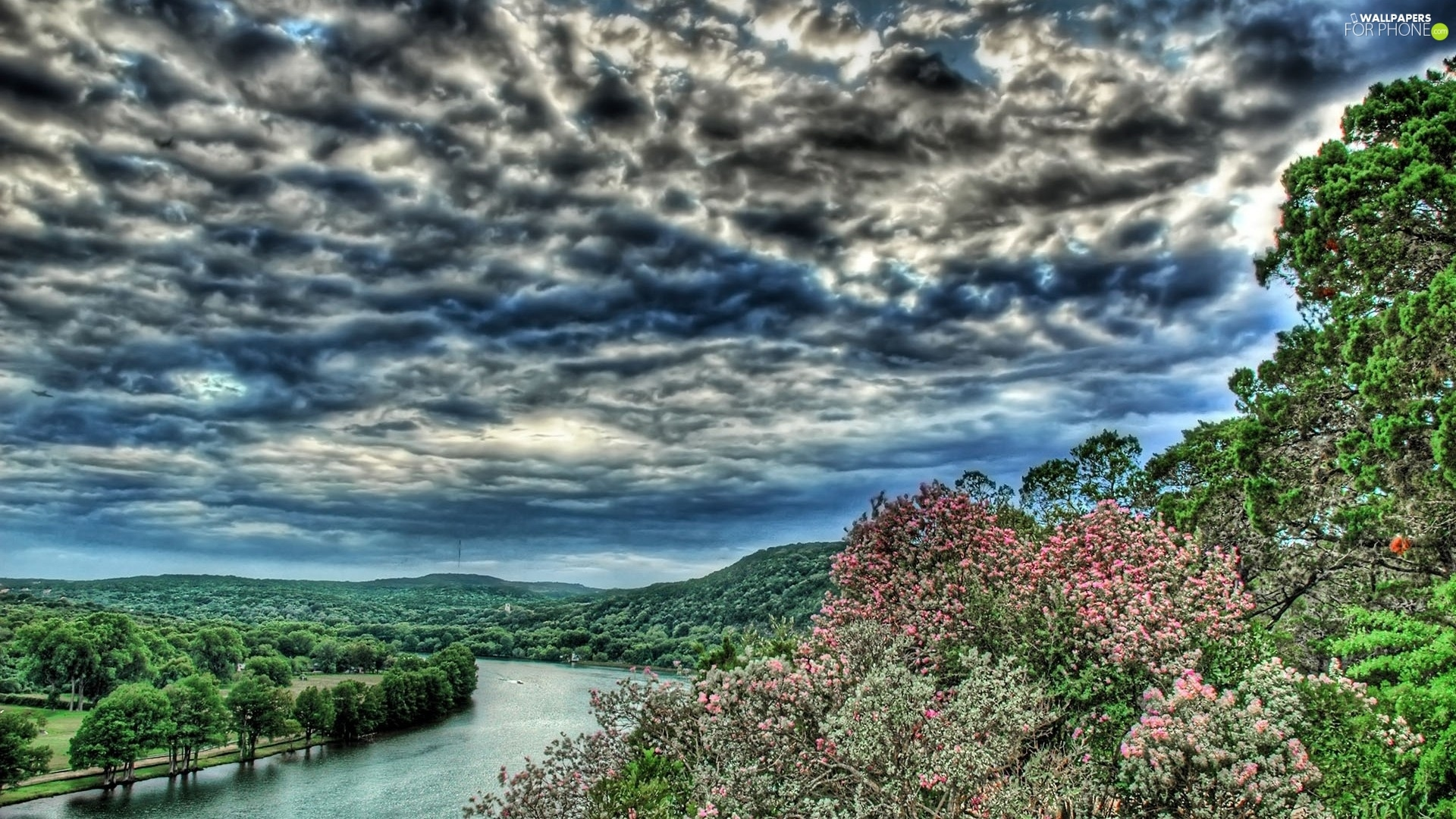 trees, viewes, storm, clouds, River