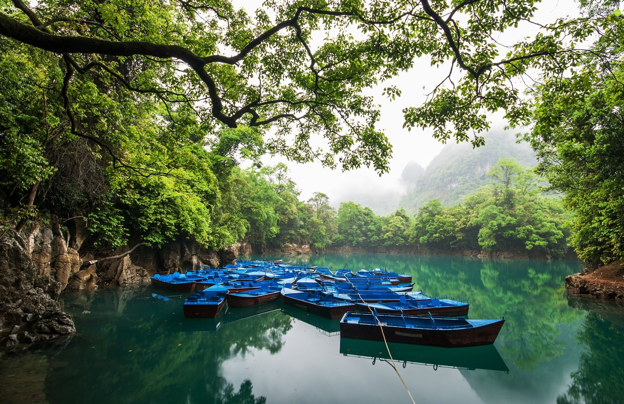 forest, boats, viewes, Mountains, trees, River