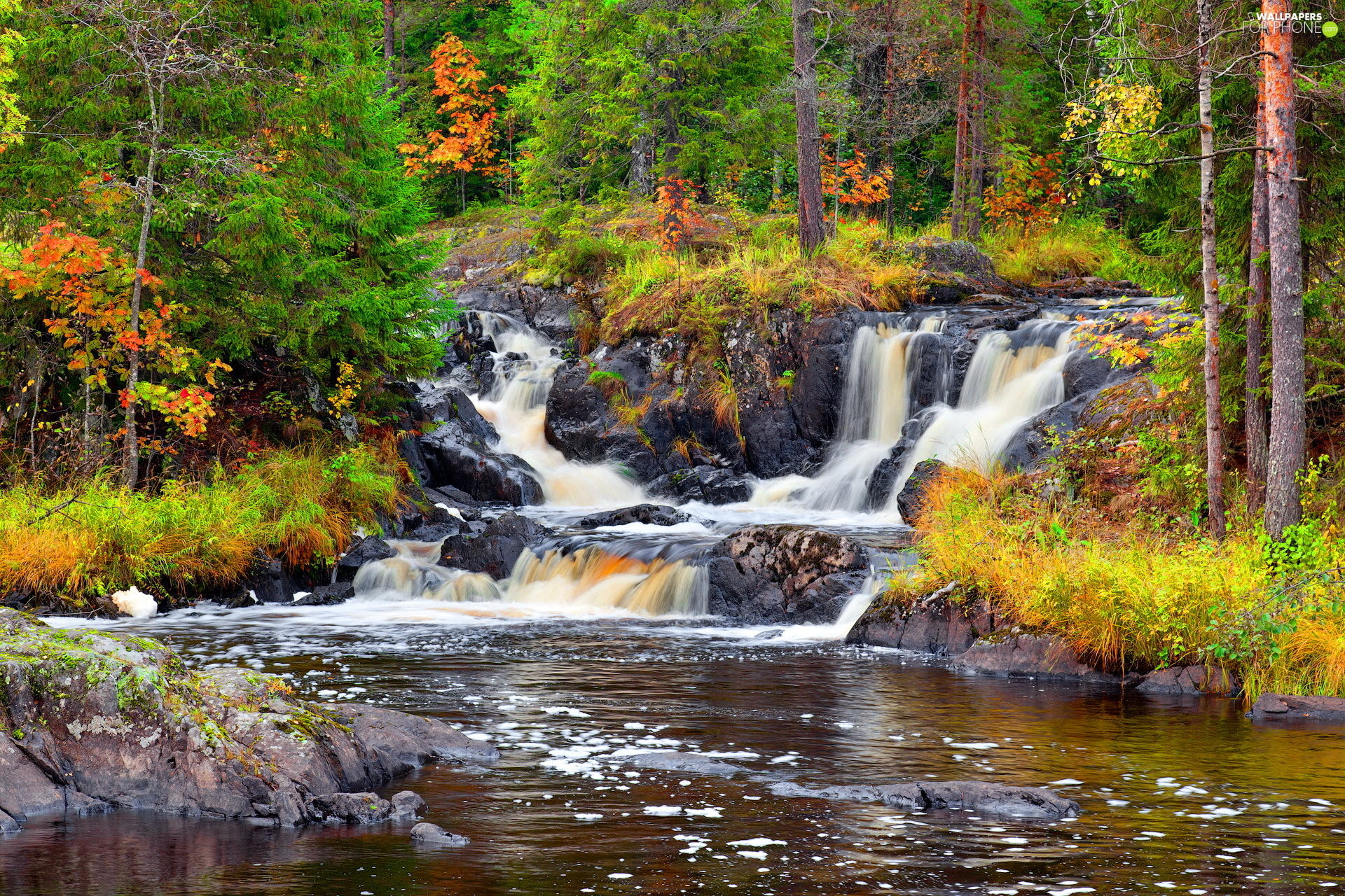 autumn, River, trees, viewes, Stones, waterfall
