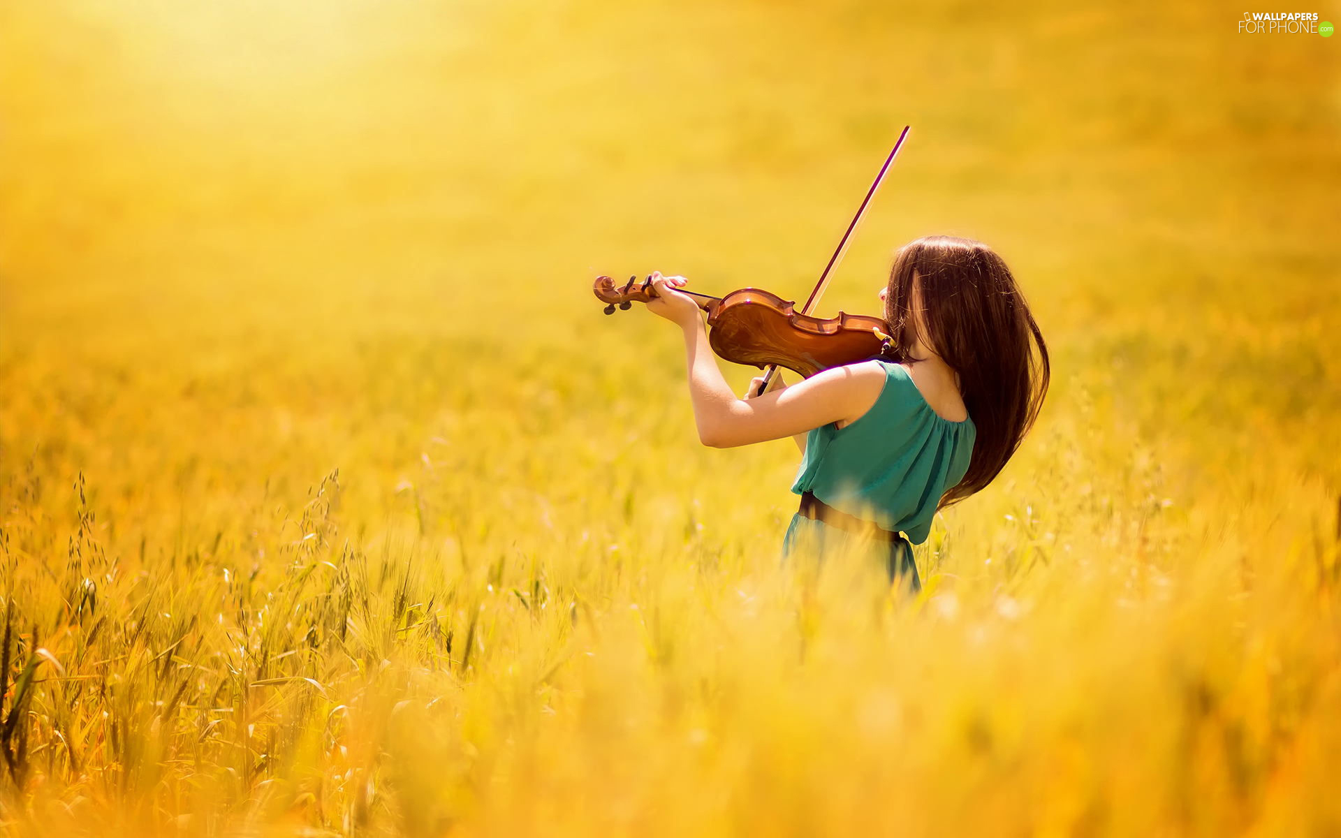 violin, Field, Women