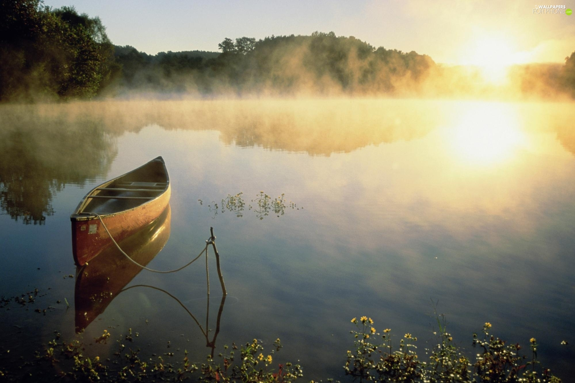 lake, sun, Boat, forest, west, water, Fog