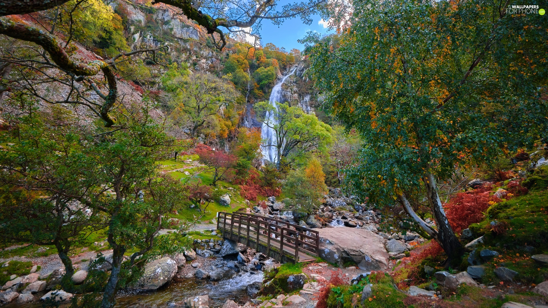 trees, bridges, Stones, waterfall, River, viewes, Mountains
