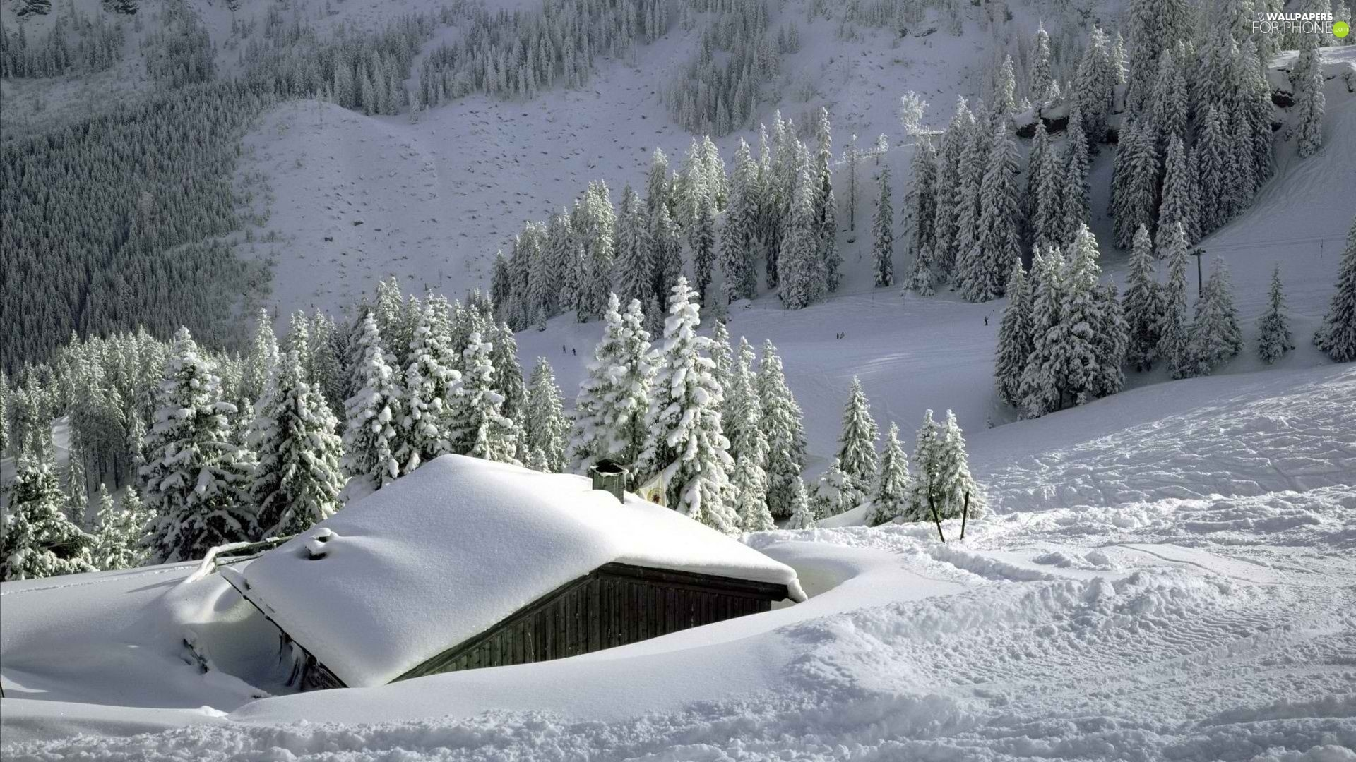 Mountains, Home, winter, woods